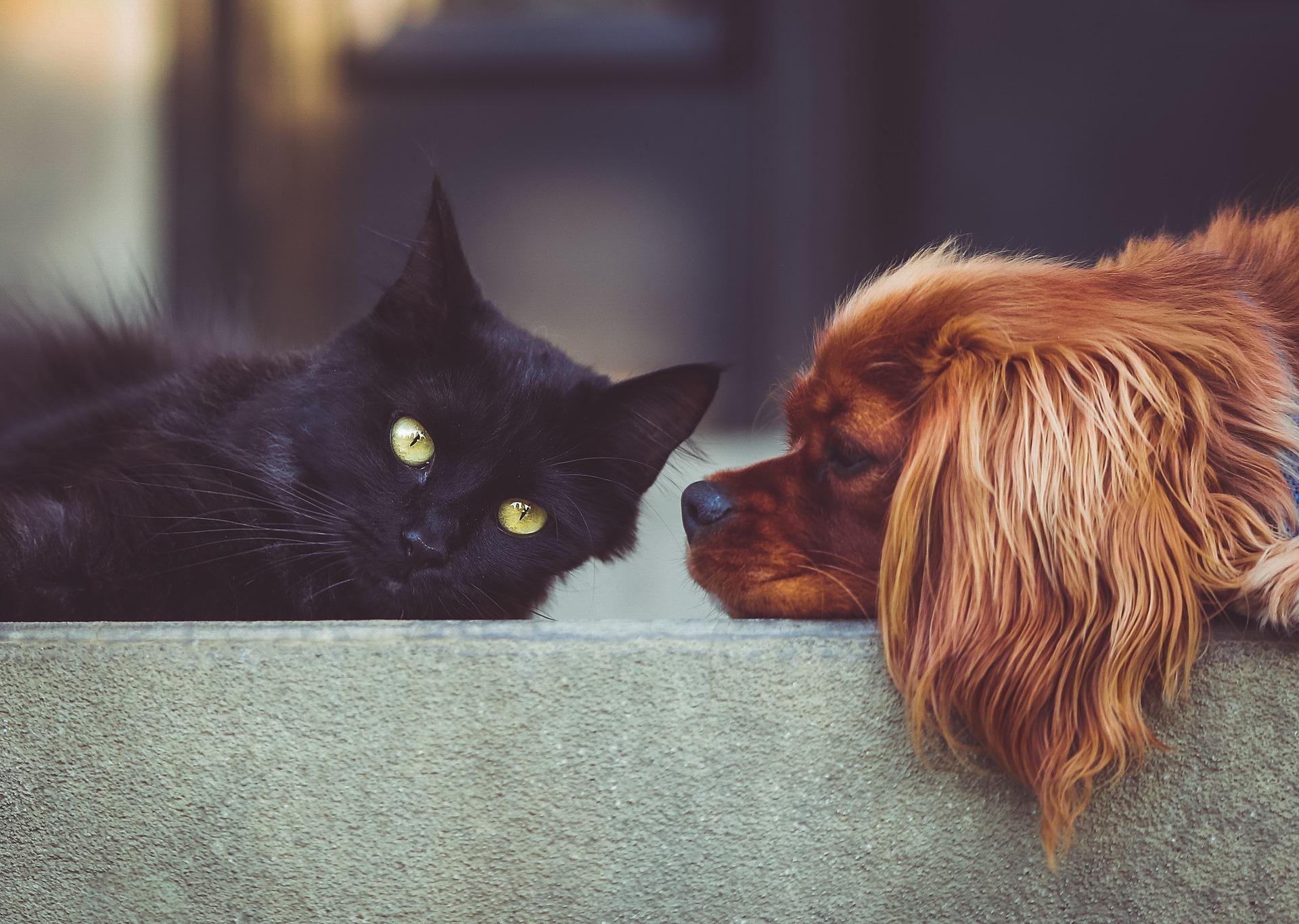 отношения между друзьями
